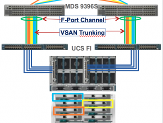 Password lost of the Cisco UCS Fabric Interconnect ?